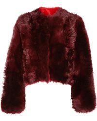 CALVIN KLEIN 205W39NYC - Cropped Shearling Coat Burgundy - Lyst