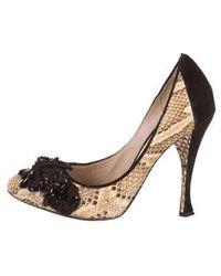 Nina Ricci - Snakeskin Embellished Pumps Beige - Lyst