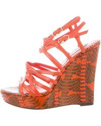 Roberto Cavalli   Python Wedge Multistrap Sandals Red   Lyst