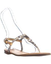 d50a667abf2 COACH - Charleen T-strap Flat Sandals - Lyst
