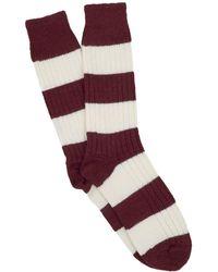 Corgi - Coton Rugby Stripe Socks In Maroon - Lyst