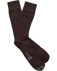 Corgi - Solid Chocolate Dress Socks - Lyst