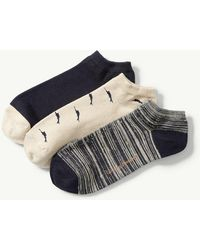 Tommy Bahama - All Over Marlin Liner Socks - 3-pack - Lyst