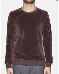 SUIT - Suit Denmark Herman Velour Sweatshirt - Lyst