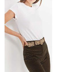Urban Outfitters - Cheetah Print Belt - Lyst