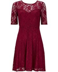 Wallis - Petite Berry Lace Fit And Flare Dress - Lyst