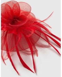 Wallis - Red Clip Feather Fascinator - Lyst