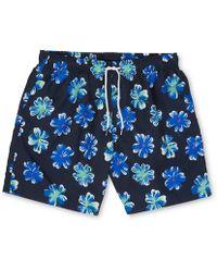 Whistles - Boardies Flower Swim Short - Lyst