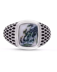 LMJ - Tree Agate Stone Ring - Lyst