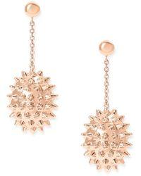 Alexandra Alberta - Durian Rose Earrings - Lyst