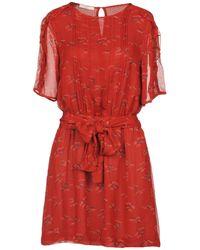 Sessun - Short Dress - Lyst