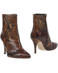 Jolie By Edward Spiers - Ankle Boots - Lyst