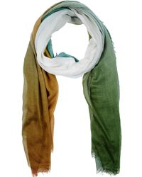 Scaglione - Scarves - Lyst