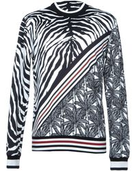 Dolce & Gabbana - Zebra-print Cotton Sweatshirt - Lyst