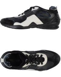 Alberto Guardiani - Sneaker - Lyst