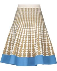 c1b0a2c01 Roberto Collina Long Skirt in Pink - Lyst