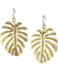 Lucky Brand - Leaf Drop Earrings - Lyst