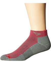 Drymax Sport - Running Mini Crew 3-pack (october Pink/anthracite) Crew Cut Socks Shoes - Lyst