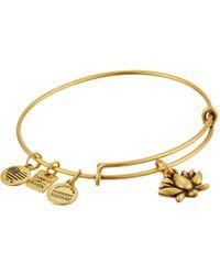 ALEX AND ANI - Charity By Design Lotus Blossom Charm Bangle (rafaelian Silver Finish) Bracelet - Lyst