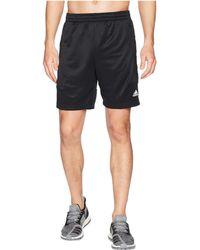 adidas - Team Issue Lite Shorts - Lyst
