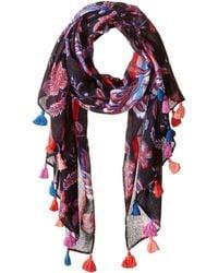 Rebecca Minkoff - Hypnotic Floral Oblong (black) Scarves - Lyst