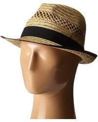 62dc00a1a6103 San Diego Hat Company - Sgf2013 Seagrass Fedora With Grosgrain Trim  (natural black)