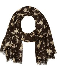Polo Ralph Lauren - All Over Rodeo Modal/cashmere Scarf - Lyst