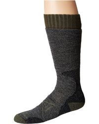 ae5456a59aa Lyst - Smartwool Phd Hunt Heavy Over The Calf Sock in Brown for Men