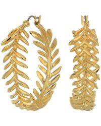 Vince Camuto - Hoop Earrings (gold) Earring - Lyst