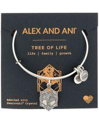 ALEX AND ANI - Path Of Symbols - Tree Of Life Iv Bangle (rafaelian Gold) Bracelet - Lyst