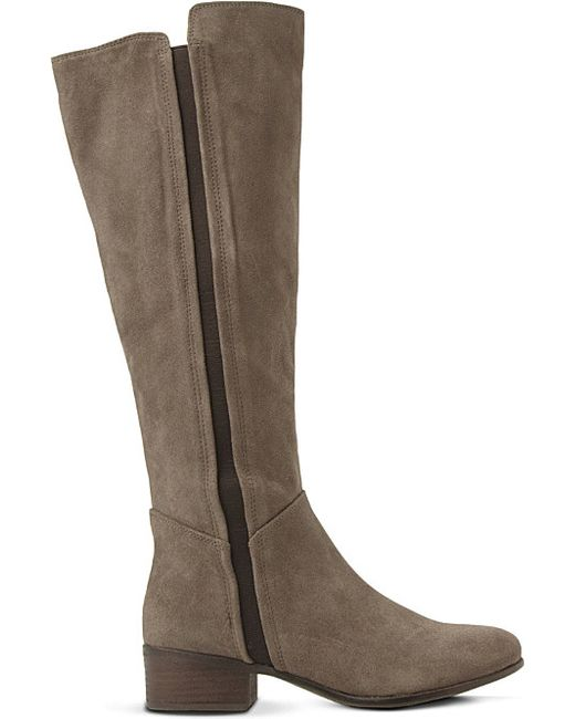 steve madden suede knee high boots in brown taupe suede