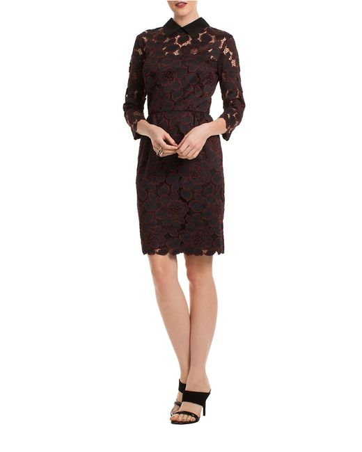 Trina Turk Collared Floral Lace Dress In Black Lyst