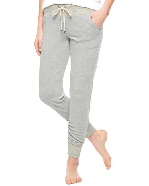Splendid | Gray Velour Active Skinny Jogger | Lyst