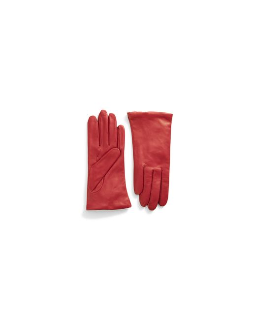 """Lord & Taylor 