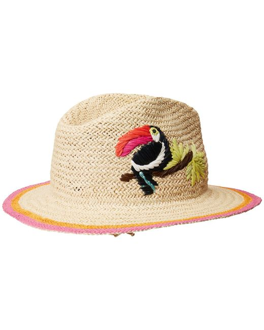 Hat Attack - Natural Toucan Fedora In Cream. - Lyst