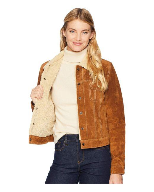 efeeb3faa75ba ... Scully - Brown Raewyn Sherpa Suede Ladies Fun Little Jean Jacket - Lyst