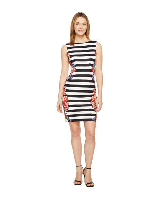 Tahari - Black Stripes And Florals Sheath Dress - Lyst