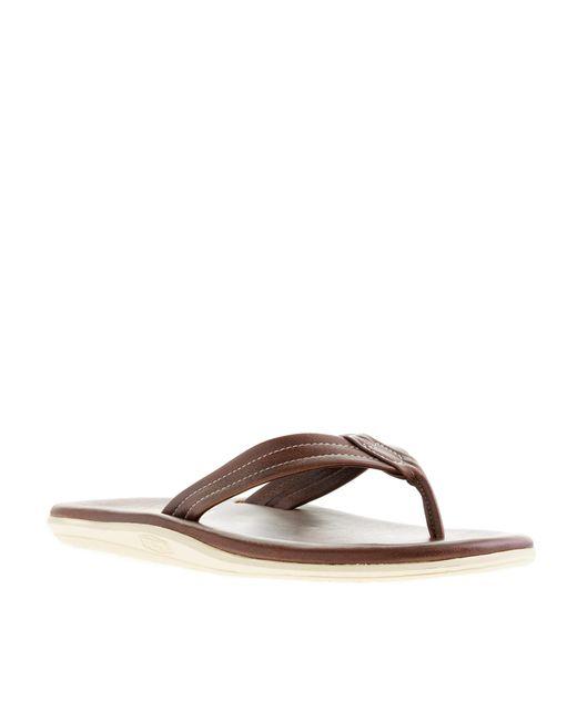 Island slipper pt202 flip flops in brown for men lyst for J crew bedroom slippers