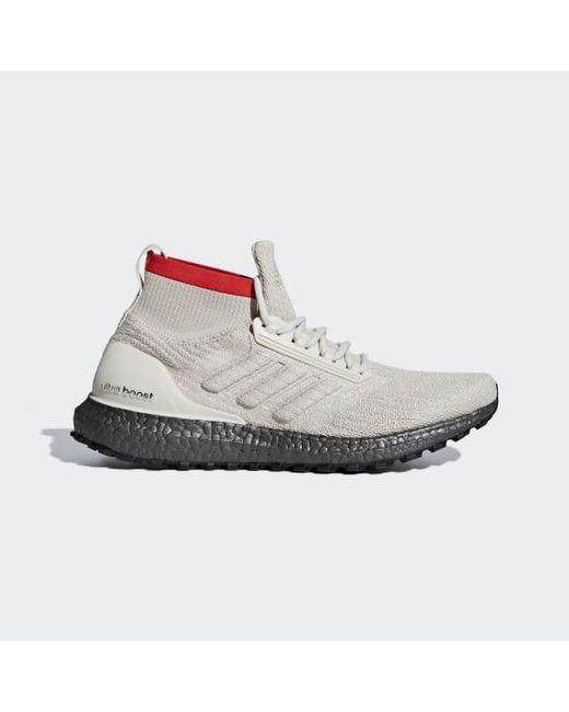 Men's Brown Ultraboost All Terrain Shoes