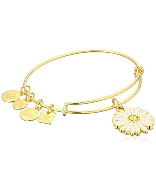 ALEX AND ANI - Metallic Charity By Design Live A Happy Life Bangle - Joe Andruzzi Foundation (shiny Gold) Bracelet - Lyst