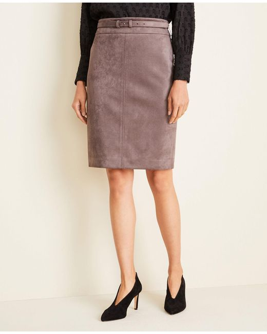 Ann Taylor Gray Faux Suede Belted Pencil Skirt