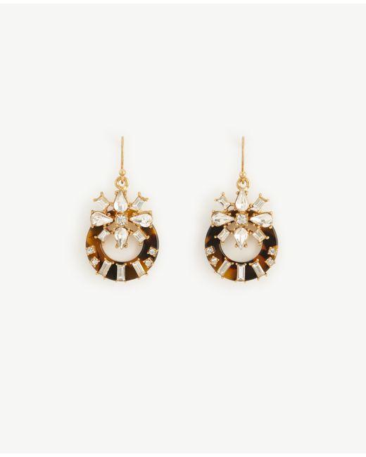 Ann Taylor   Metallic Tortoiseshell Print Crystal Drop Earrings   Lyst