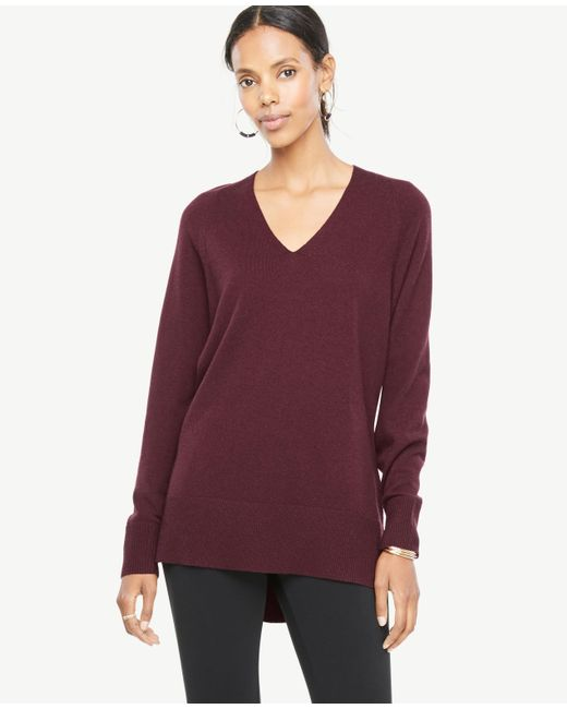 Ann Taylor Tunic Sweater