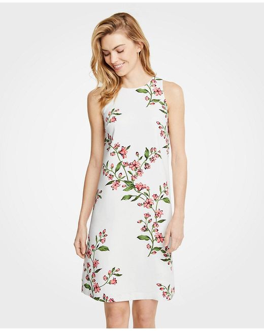 Ann Taylor - White Petite Floral Sleeveless Shift Dress - Lyst