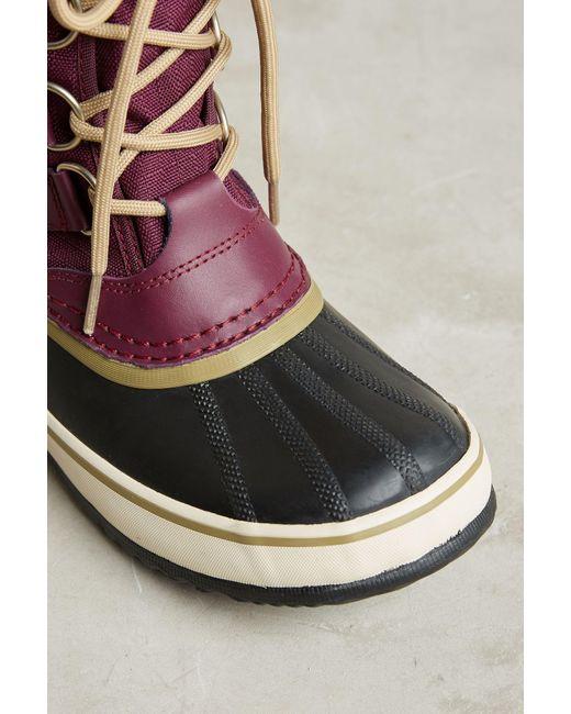 Sorel Winter Carnival Purple Snow Boot In Brown Save 1