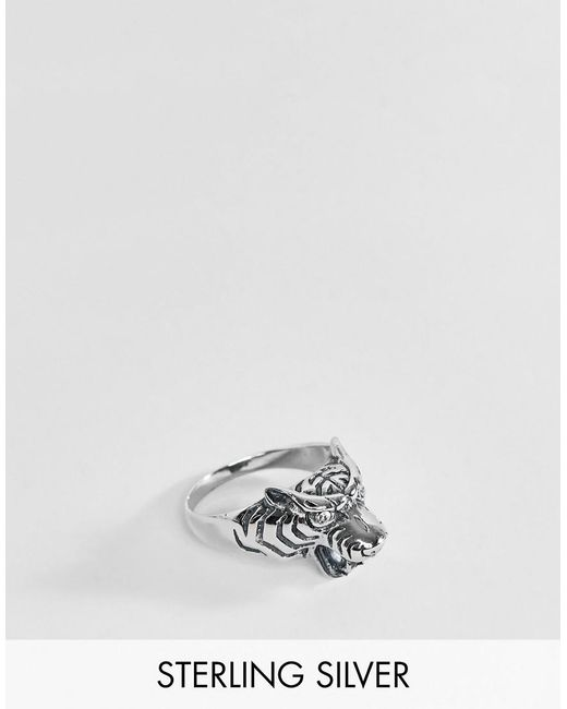 a24daaf413f4 ASOS - Metallic Sterling Silver Tiger Ring With Crystals for Men - Lyst ...
