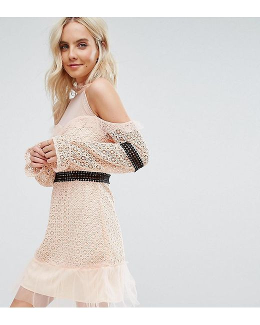 True Decadence - Pink Cold Shoulder All Over Lace Mini Dress With Contrast Waistband And Mesh Hem - Lyst