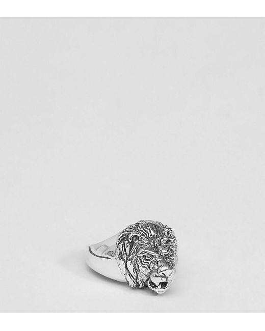 ASOS | Metallic Sterling Silver Lion Ring for Men | Lyst