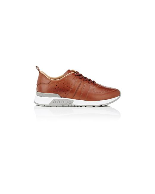 Tod's | Brown Perforated Leather Sneakers | Lyst