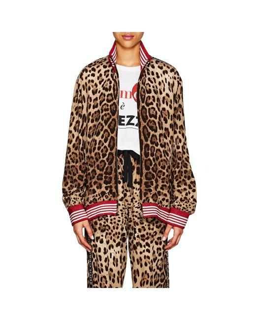 Dolce & Gabbana - Multicolor Logo-striped Leopard - Lyst